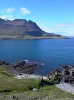 Drivtømmer ved Reykjarfjörduer, Island